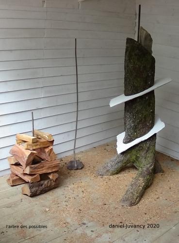 sculpture,minimal, installation, art actuel,daniel juvancy,arbre, possible,